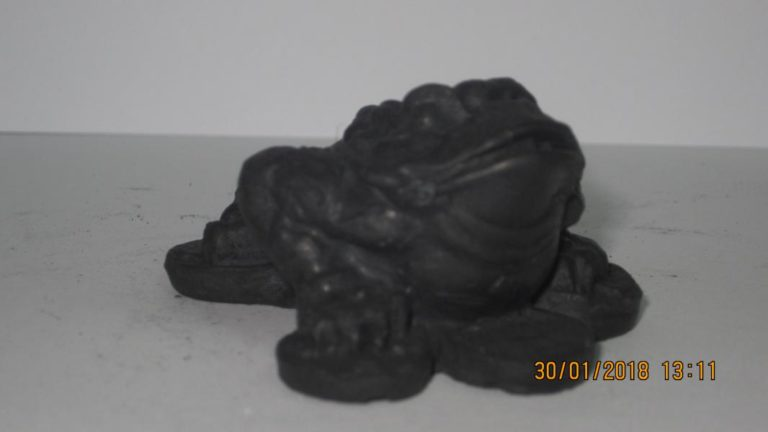 13. Трехлапая жаба на монетах